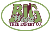 Big Wood Tree Expert